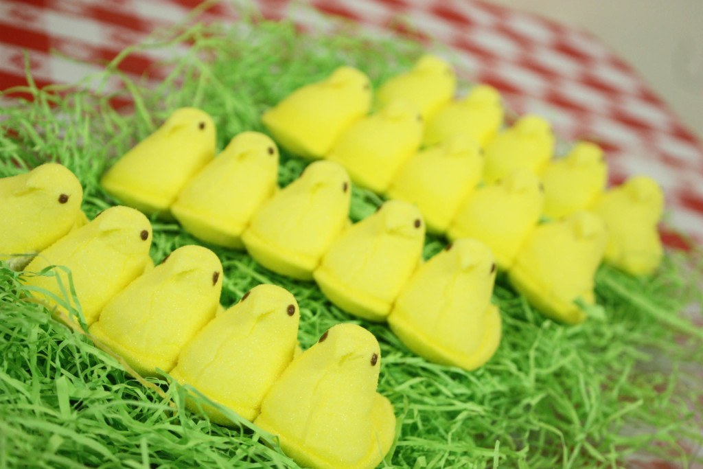Barnyard birthday party..peeps (chicks) on easter grass