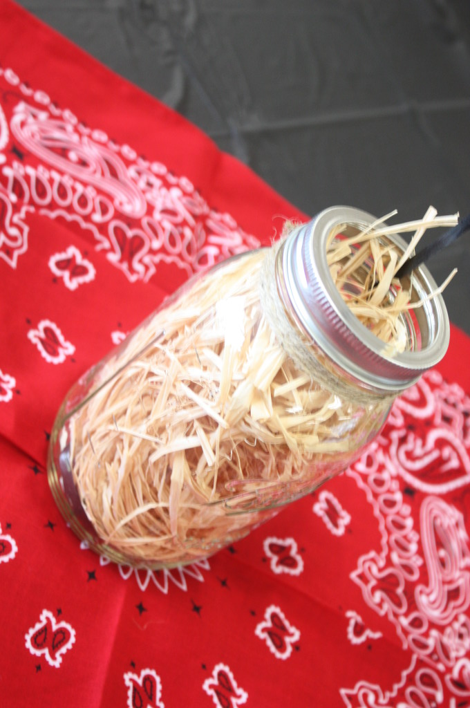 Barnyard birthday party. Mason jar filled with raffia.