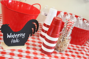 Barnyard birthday party watering hole sign with paper straws and tubs willed with ice and waters