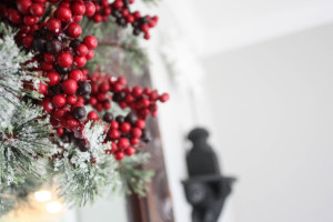 Christmas Home Tour Part 1