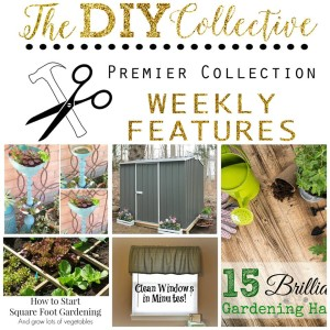 DIY collective features
