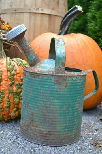 Tin can and pumpkins
