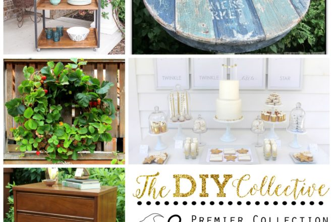 One Stop Shop for All Things DIY- DIY Collective No. 27