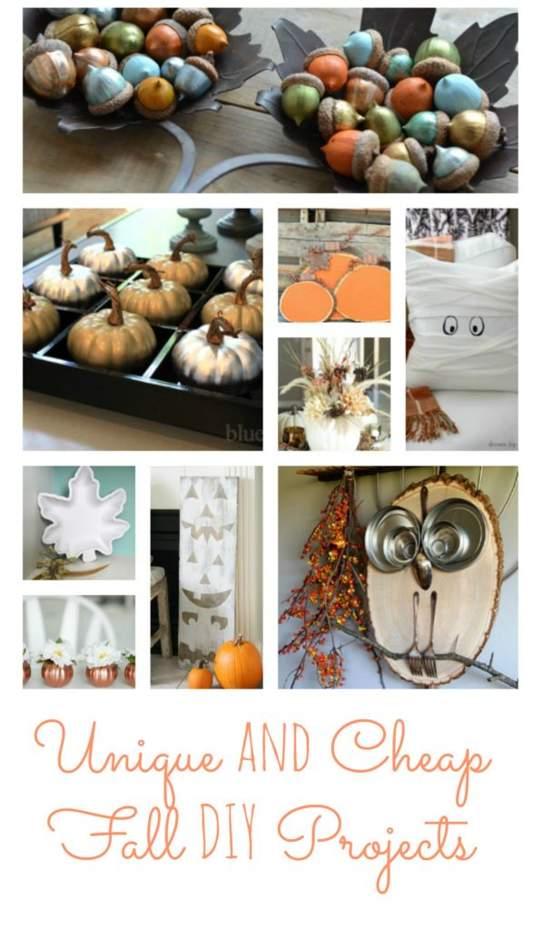 Unique Fall DIY Projects