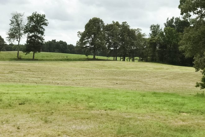 Field of Dreams~and an update on the Building Process