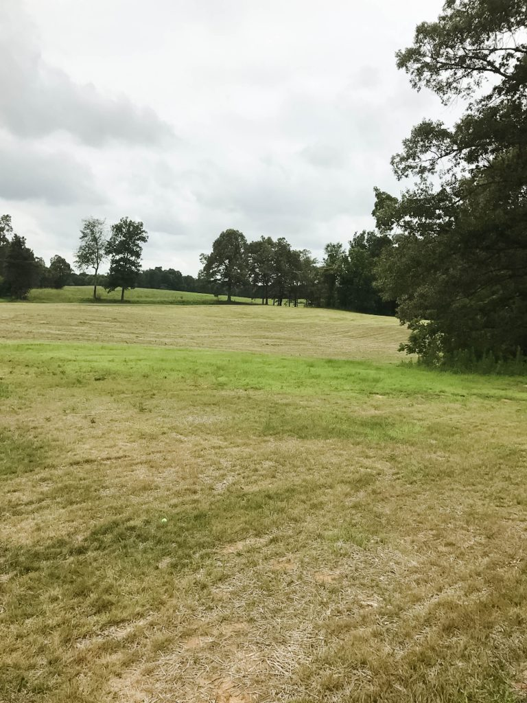 Field of Dreams~An empty field that is full of dreams and ideas as homeowners plan to build their forever home on their farm.