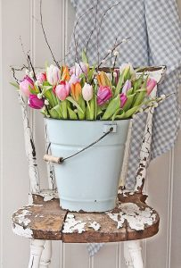 Tulips in chippy bucket for spring