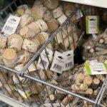 Dollar Tree Craft Supplies and Decor Items