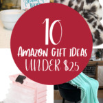 Amazon gift ideas under $25