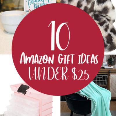 Amazon gift ideas under $25