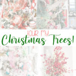 Christmas Tree tour