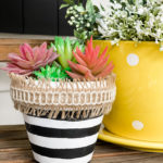 Dollar Tree terracotta pot makeover
