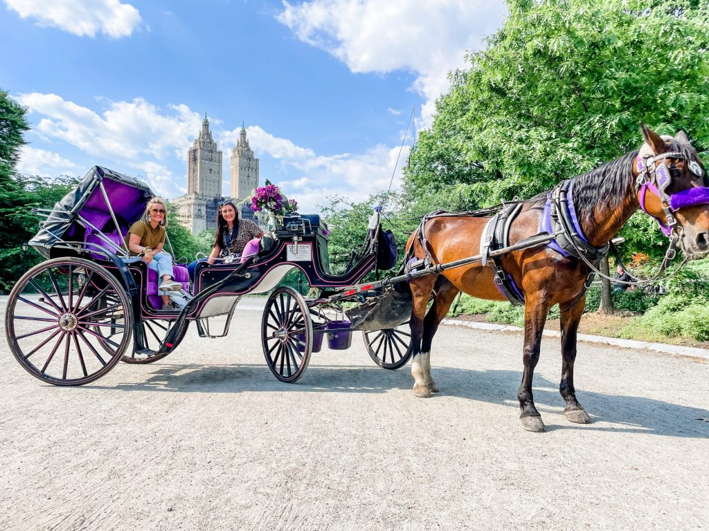 3 day trip travel guide to new york city - carriage tour