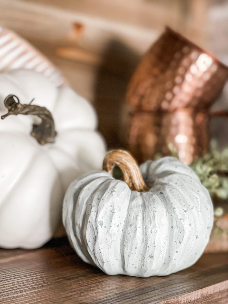 close up of pumpkins on fall coffee bar